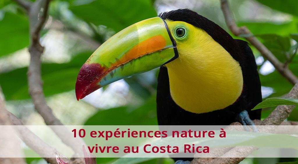 10 expériences nature à vivre au Costa Rica