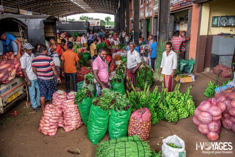 10 activités à faire au Sri Lanka