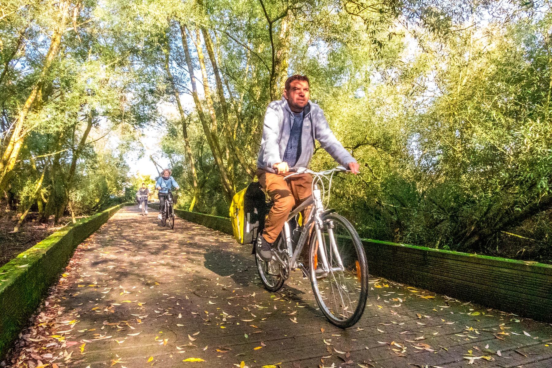 Balade à vélo dans les parcs de Vitoria