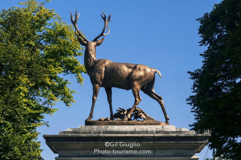Statue de Cerf à Senlis