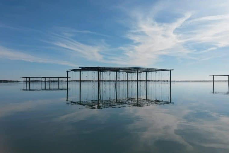 étang de Thau