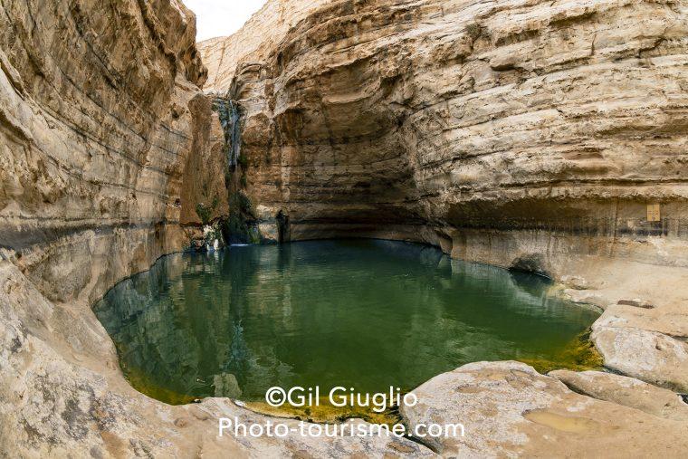 Piscine naturel du canyon d'Ein Avdat