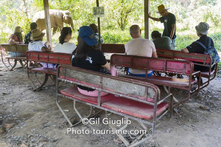 Rassemblement sur des sièges à dos d'éléphants