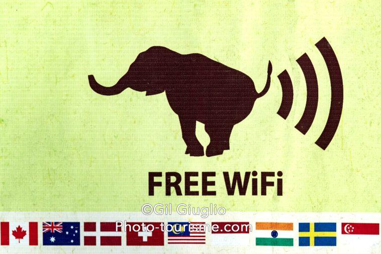 Logo wifi et éléphant et