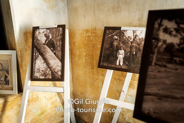 Photos à l'Intérieur de Leonowen House
