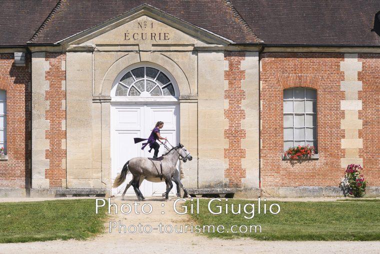 Écuyère debout sur un cheval au Haras du Pin