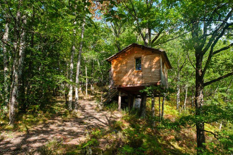 Cabane dans les arbres Des Chesnaies