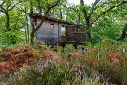 J'ai testé une nuit dans une cabane dans les arbres en Corrèze