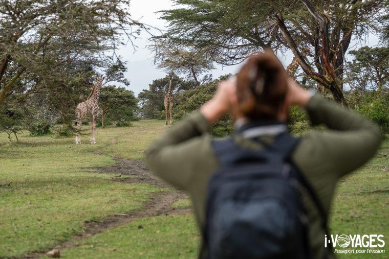 Girafe, Crescent Island
