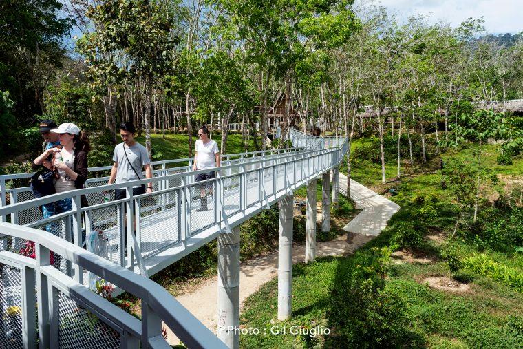 Touristes sur passerelle au Phuket Elephant Sanctuary