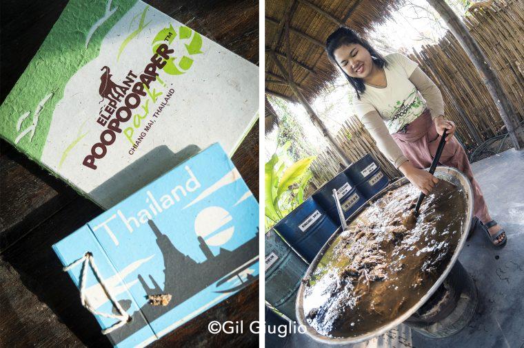 2 photos de l'Elephant Poo Poo Paper Park