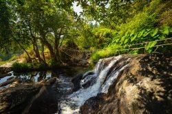 Visiter le parc national de Khao Yai