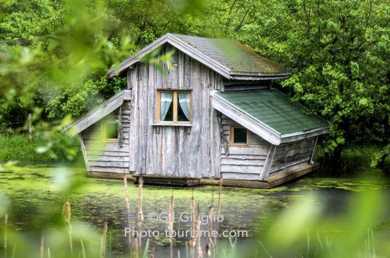 Cabane flottante cachée dans la végétation