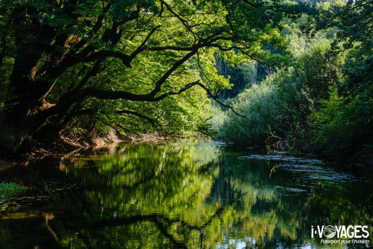 Rivière Rak, Gorge de Rakov Škocjan