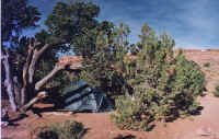 devils garden campground.jpg (51716 octets)