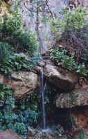 wepping rock2.jpg (50264 octets)