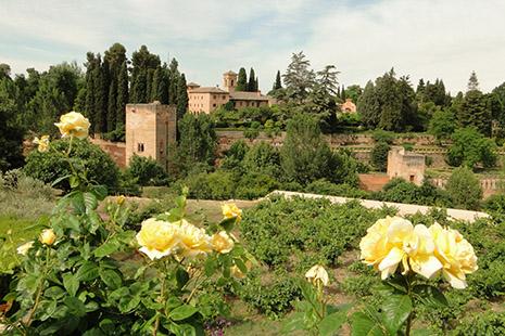 Dominant la ville de Grenade, l'Alhambra offre une époustouflante successions de palais et jardins.