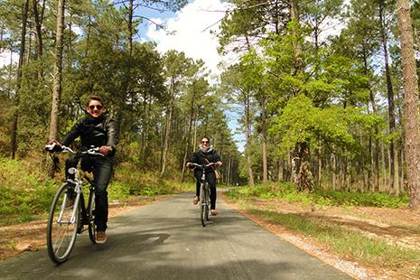 Ici encore plus qu'ailleurs, le vélo mérite son surnom de petite reine. Il y a quantité d'itinéraires possibles, dont des tronçons de la véloroute Vélodyssée.