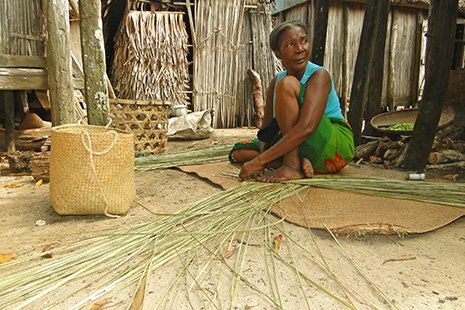 Le clou de girofle est la principale ressource agricole. On trouve aussi le café et la vanille, toutes les variétés de fruits tropicaux.
