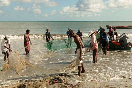 - Quelque 150 marins pêcheurs exercent encore au Vauclin et dans ses environs. C'est le port de pêche le plus important de la Martinique