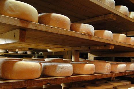 Le fromage est l'une des richesses de la vallée de Laruns. Affiné comme autrefois, il ira sur les meilleures tables de France.