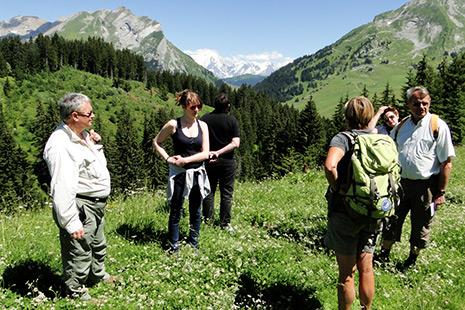 Depuis le plateau de Beauregard, le groupe de marcheurs peut admirer le mont Blanc au travers du col des Aravis