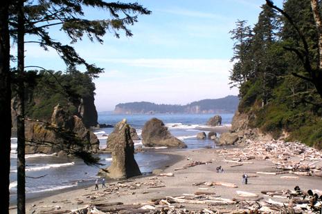Ruby Beach, l'une des plus impressionnantes plages du sanctuaire marin du parc.