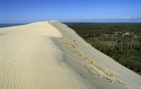 Crête de la dune du Pilat - La Teste de Buch - Aquitaine  © CRTA - JJ Brochard