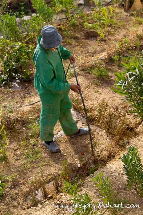 Jardinier de l'Atlas Kasbah Ecolodge