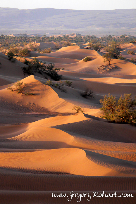 Désert du sud marocain