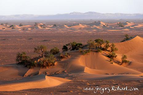 Entrée du désert du Sahara