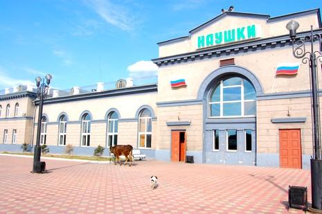 Naouchki