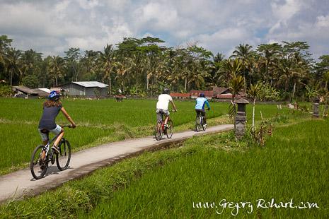 Balade à vélo à travers les rizières