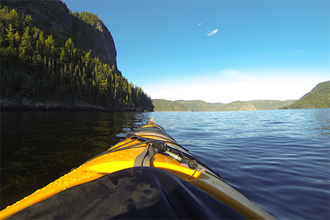 Le fjord du Saguenay se prête bien à une découverte en kayak