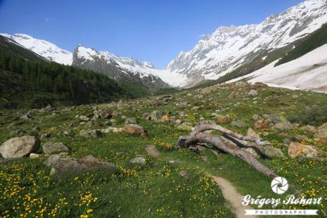 Vallée du Lötschental, bel écrin de nature