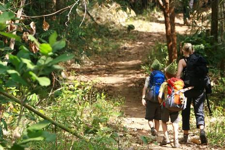 Randonnée en famille au coeur de la jungle Thaïlandaise