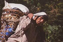 Porteur népalais